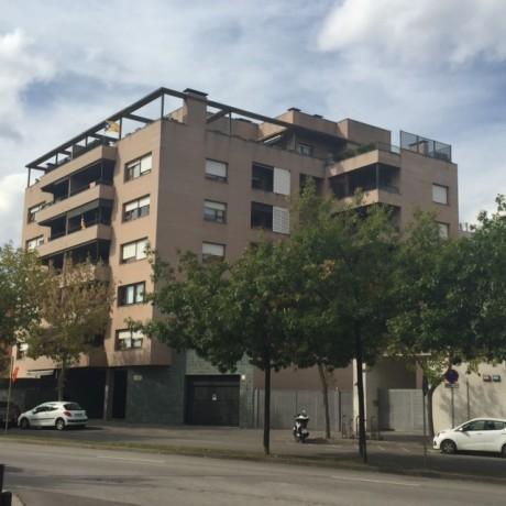 Pis Girona Pericot